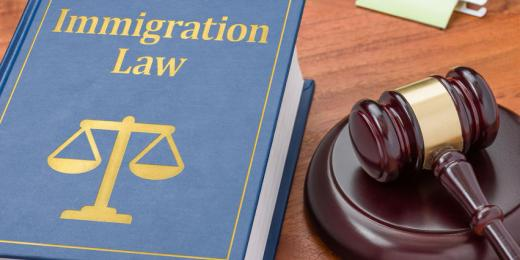 The Grounds For Judicial Review In Immigration Law