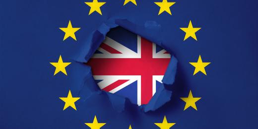 Brexit Solutions and the Sole Representative Visa