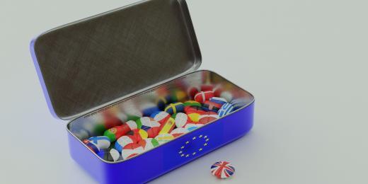 Best Brexit options for EU nationals